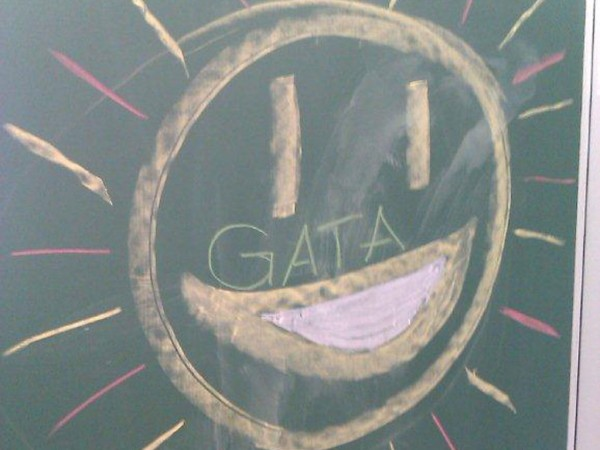GATA Tafelbild